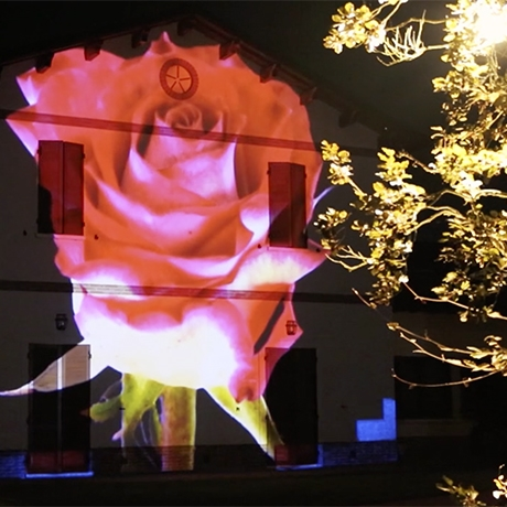NEO Video Mapping Wedding